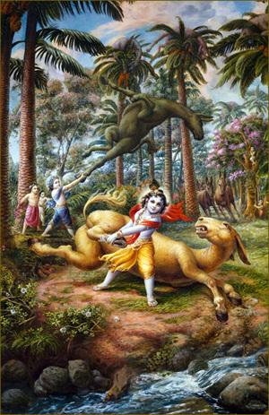 קרישנה ובַּלַראמה מיהרו ותפסו כל אחד מן החמורים ברגליו האחוריות והשליכו אותם אל צמרות העצים