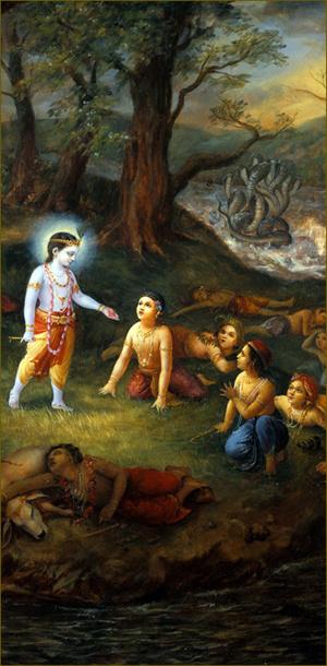 קרישנה שלח אל הילדים והפרות את מבטו החנון וכולם שבו לעשתונותיהם
