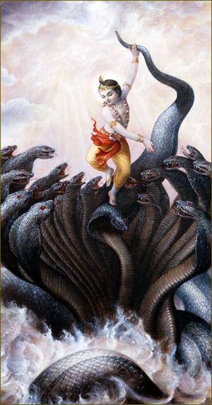 קרישנה התחיל לחולל על ראשיו של הנחש, אף שאלה נעו כה וכה